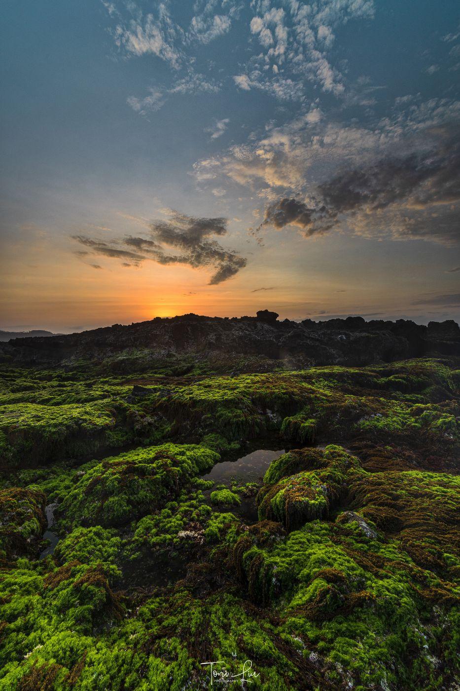 Coral Coast Karang Beureum, Indonesia