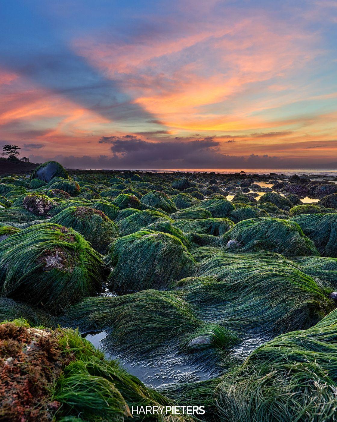 Green Moss Rocks, Indonesia