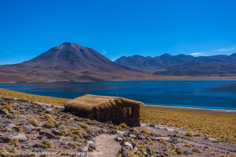 Lagunas Miñiques e Miscanti, Chile