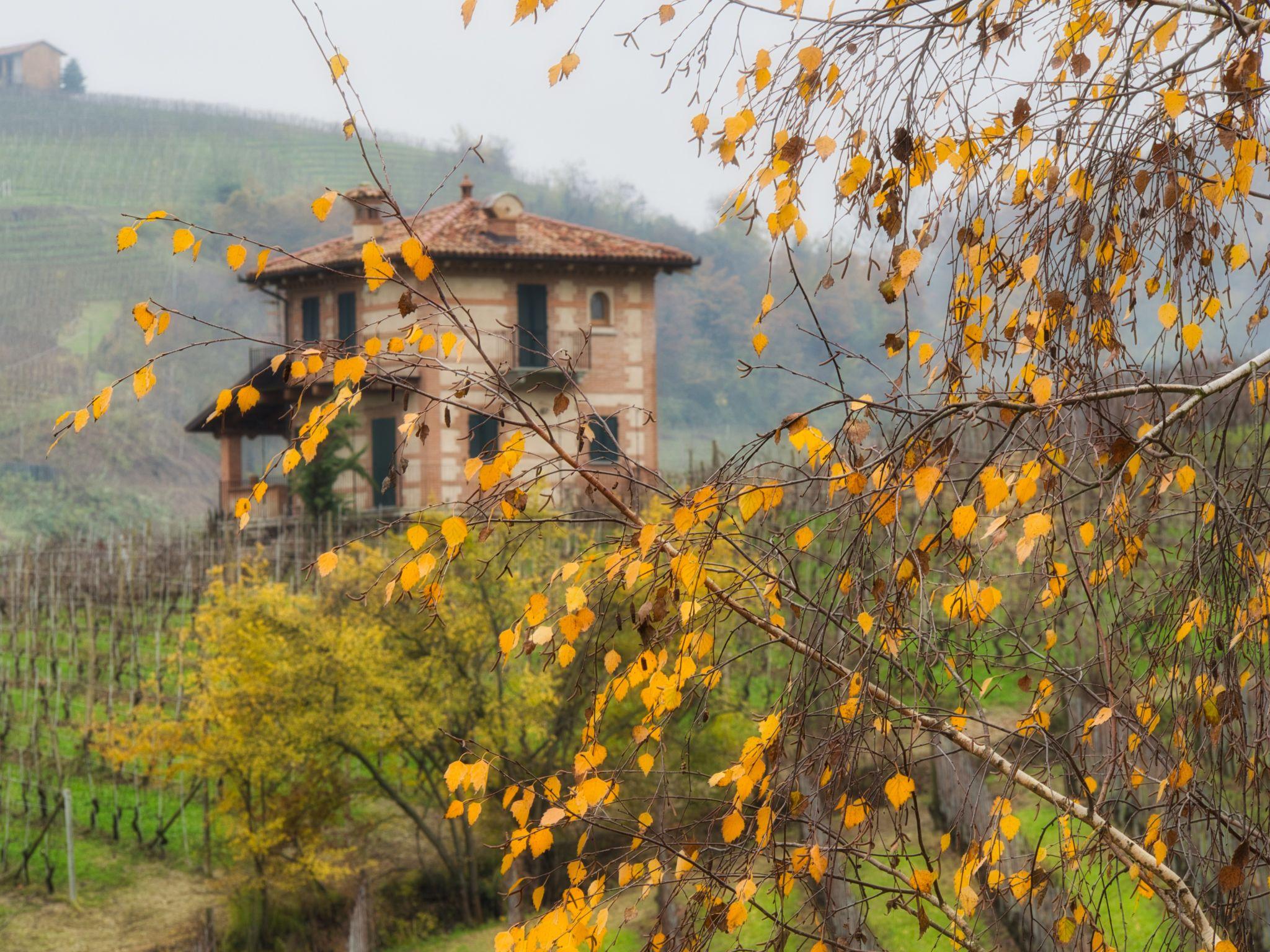 Piemontese Valley, Italy