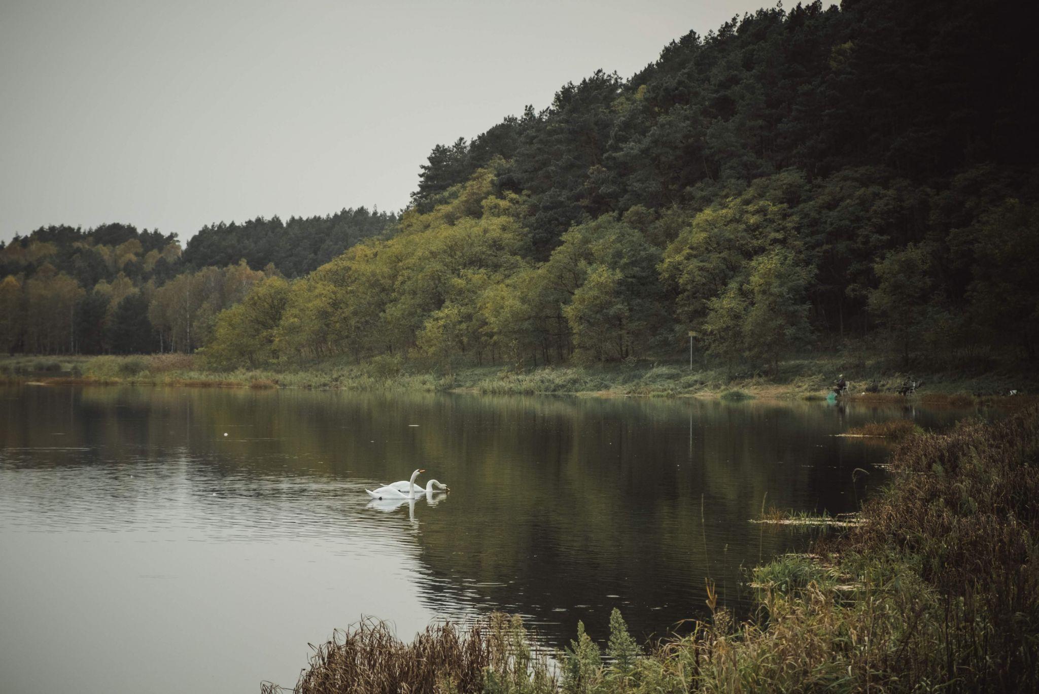 Suchatowka lake, Poland