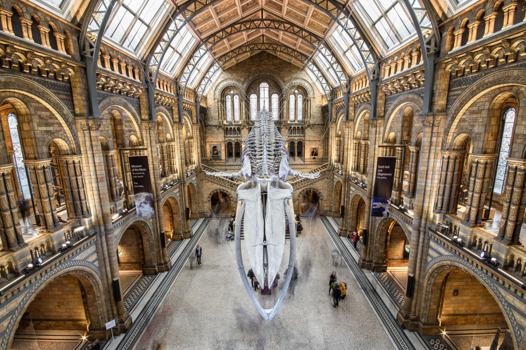 The Natural History Museum Lobby, United Kingdom