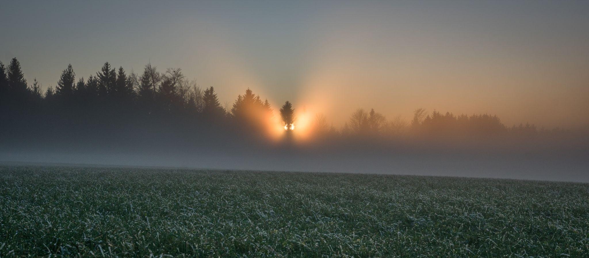 foggy sunset, Switzerland