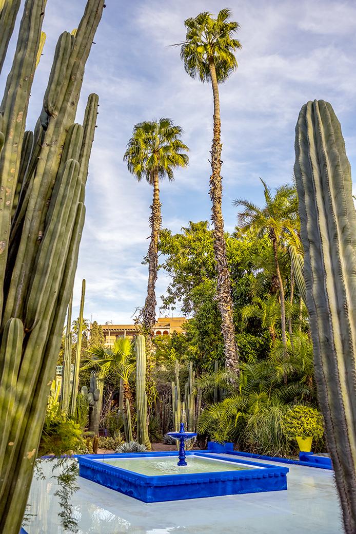 Jardin Majorelle, Morocco