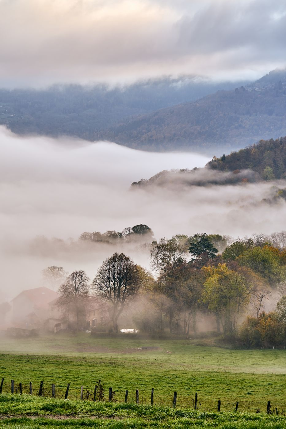 Misty morning valley, France