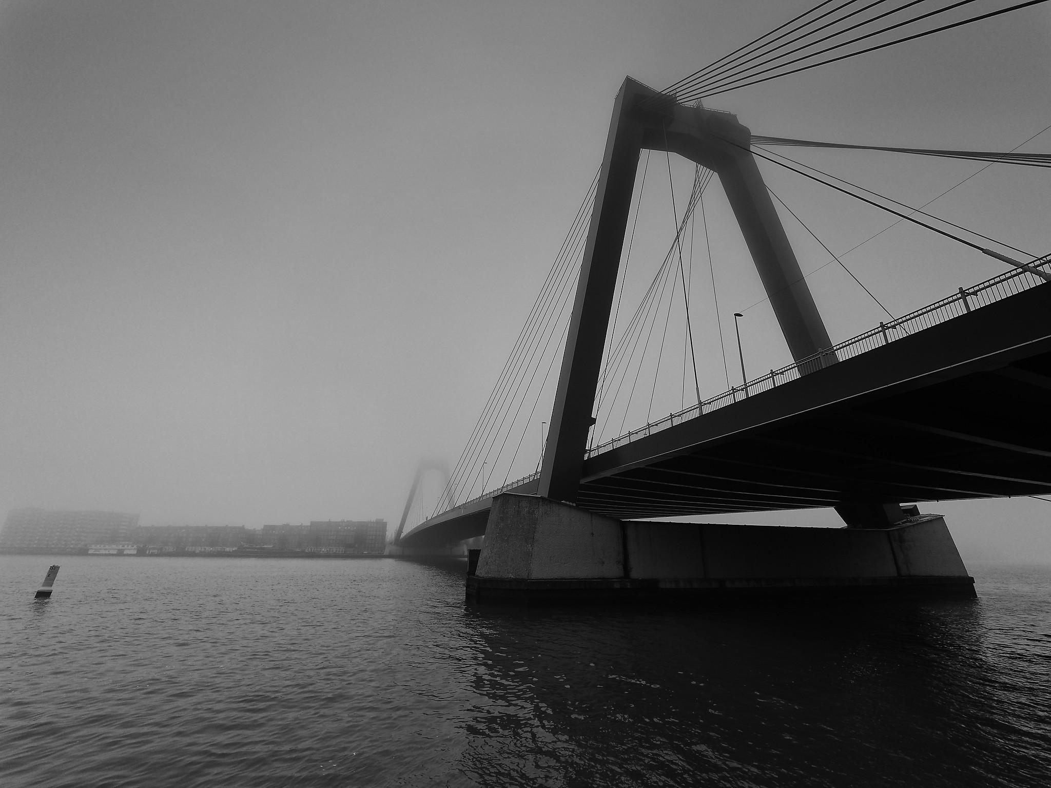 Rotterdam Willemsbruck, Netherlands