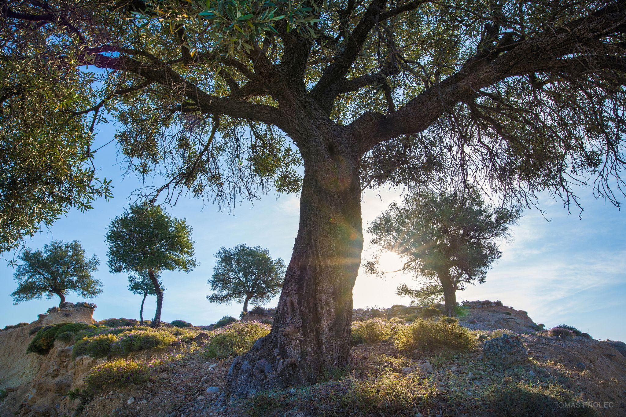 Archangelos, Greece