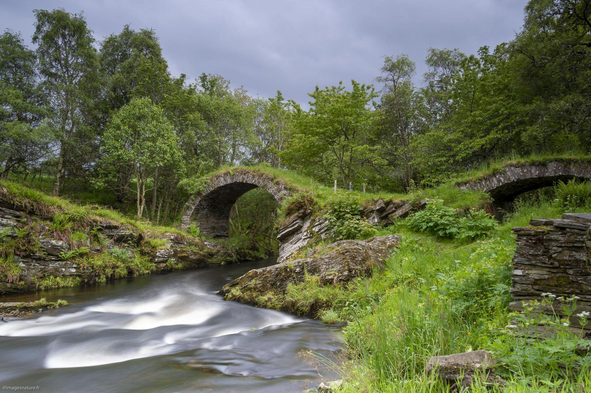 Old Bridge of Livet, United Kingdom