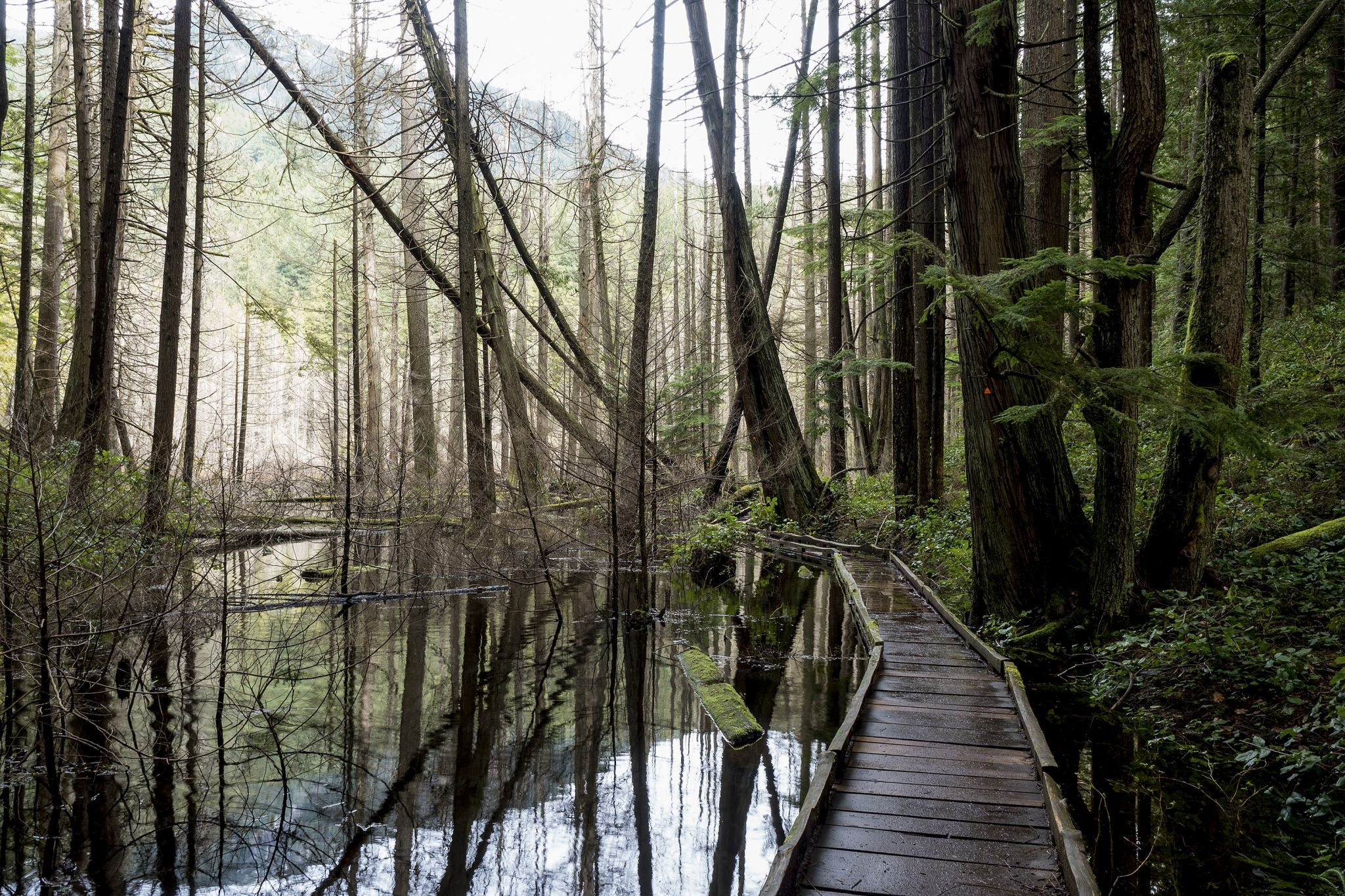 Whyte Lake, West Vancouver, Canada