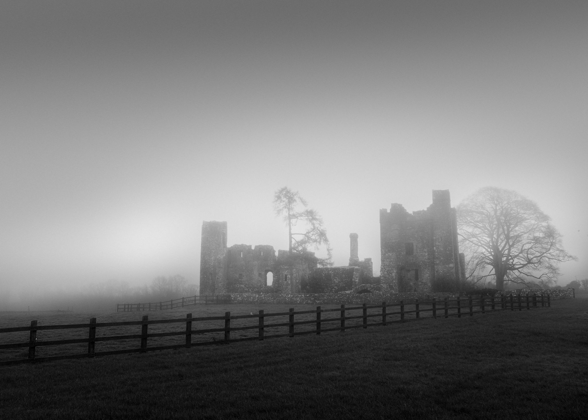 Bective Abbey, Ireland
