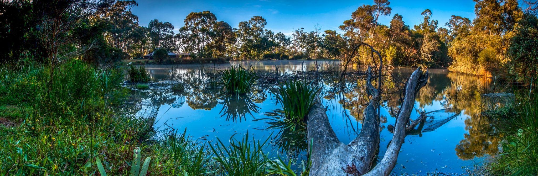 Billabong at Dixons Creek, Victoria, Australia