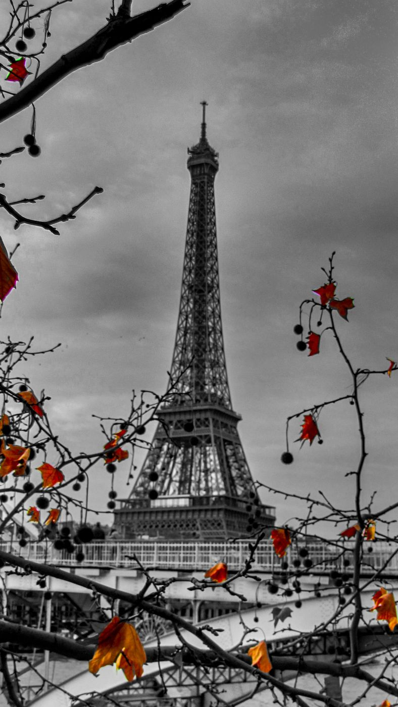 Eiffel tower Autumn Paris, France