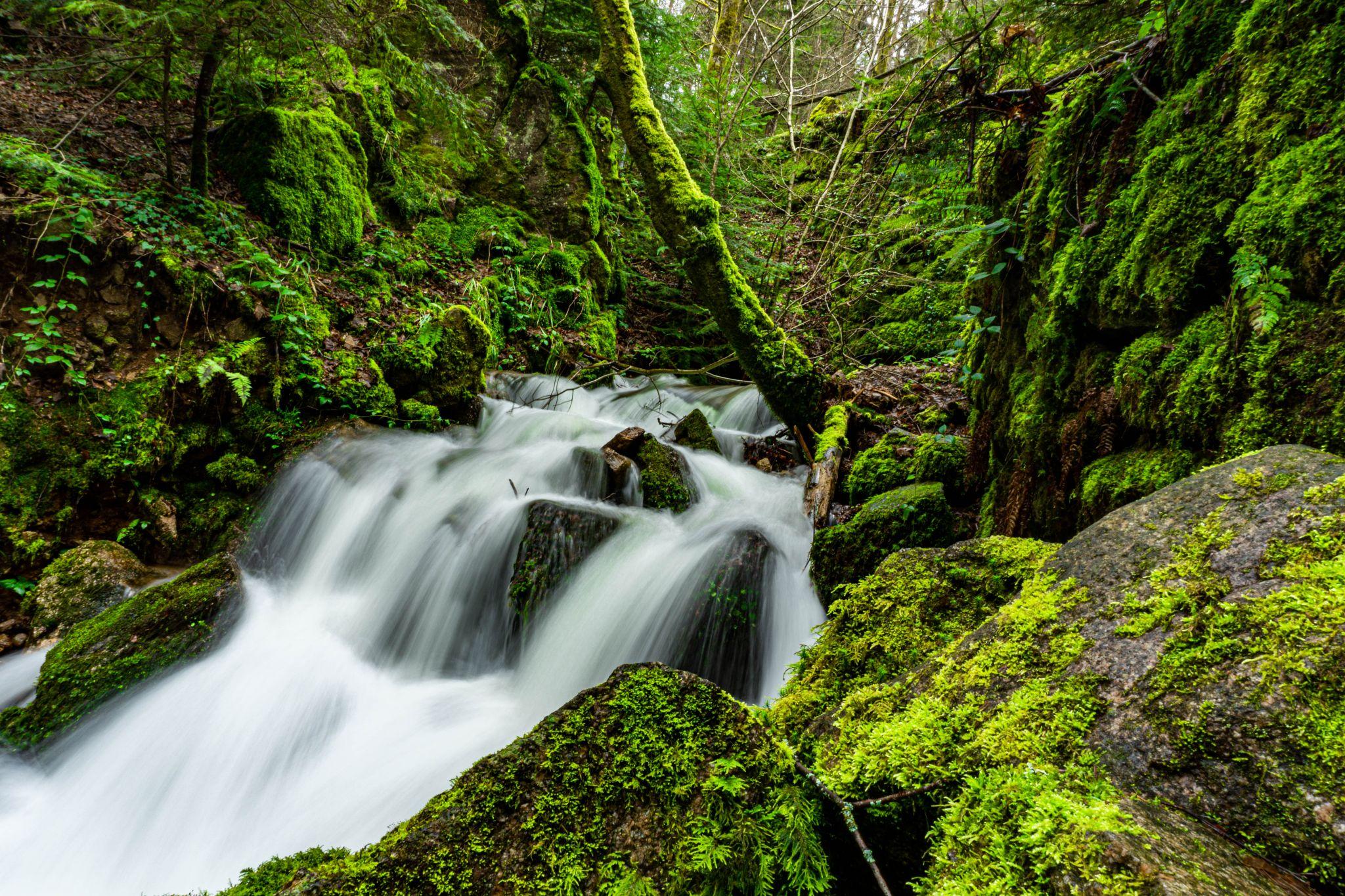 Geroldsauer Wasserfälle Bachlauf, Germany
