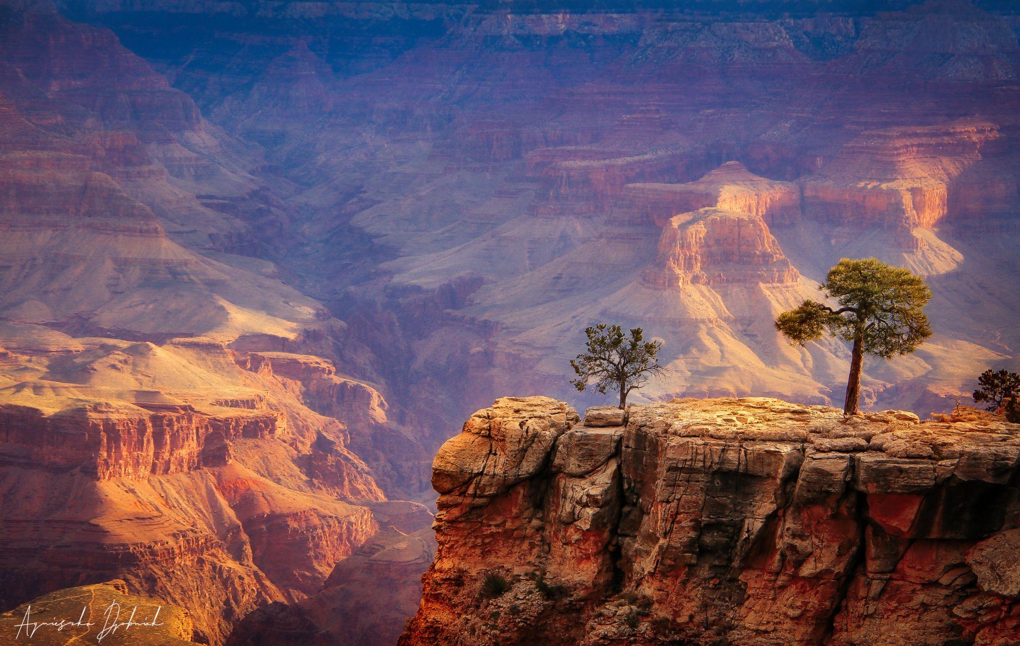 Grand Canyon National Park, USA, USA