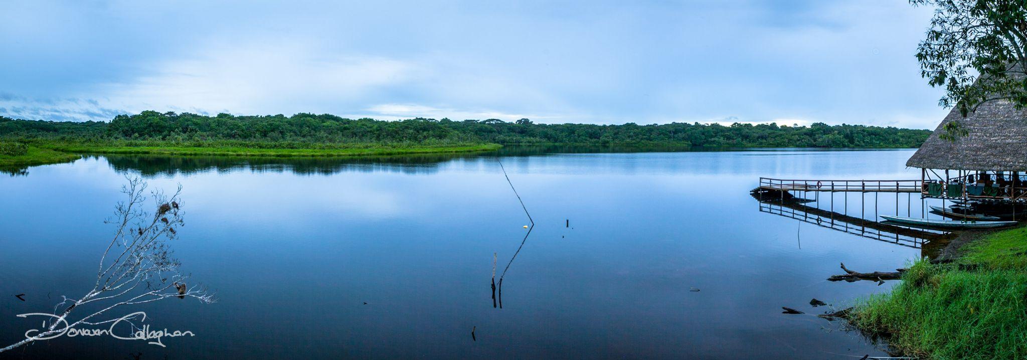 Napo Wildlife Center Ecolodge, Anangu Lake,, Ecuador