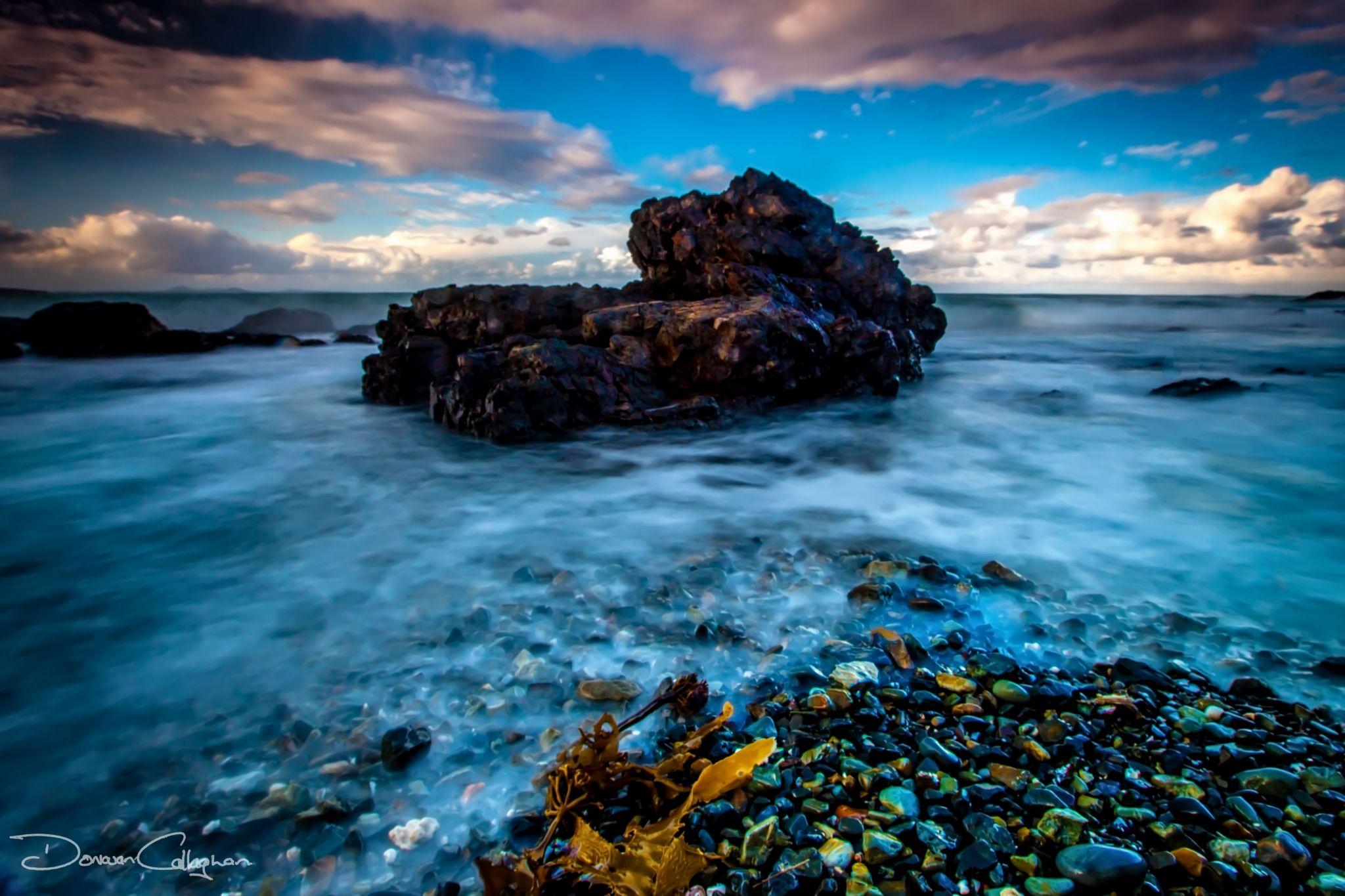 Rock & Seaweed Woolgoolga, North Coast, New South Wales, Australia