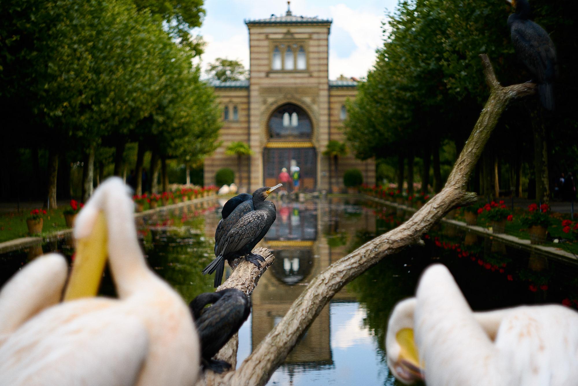 Wilhelma Zoo, Germany