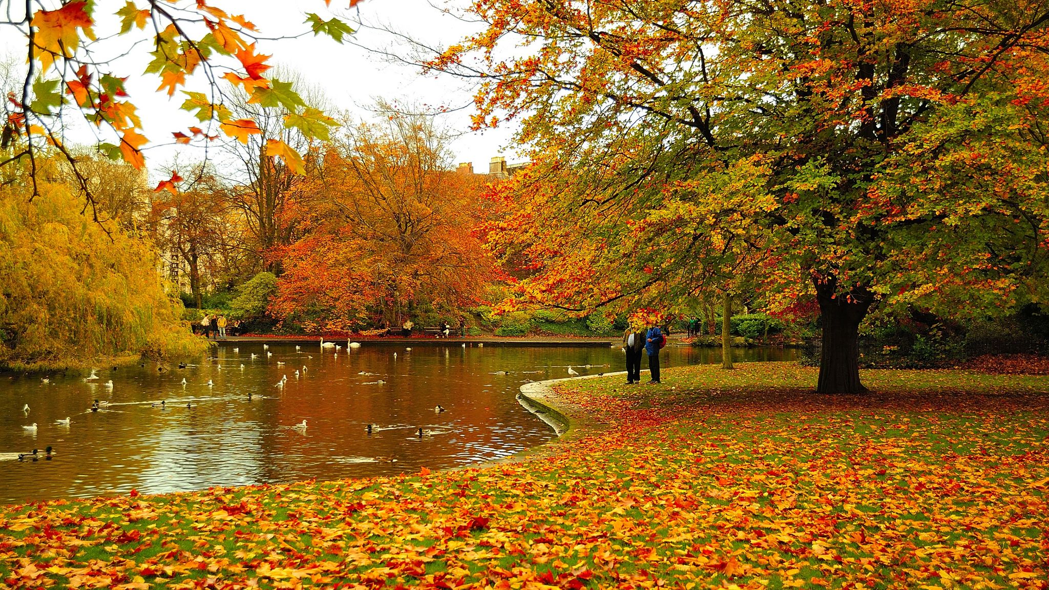 Autumn of St Stephen's Green, Dublin., Ireland