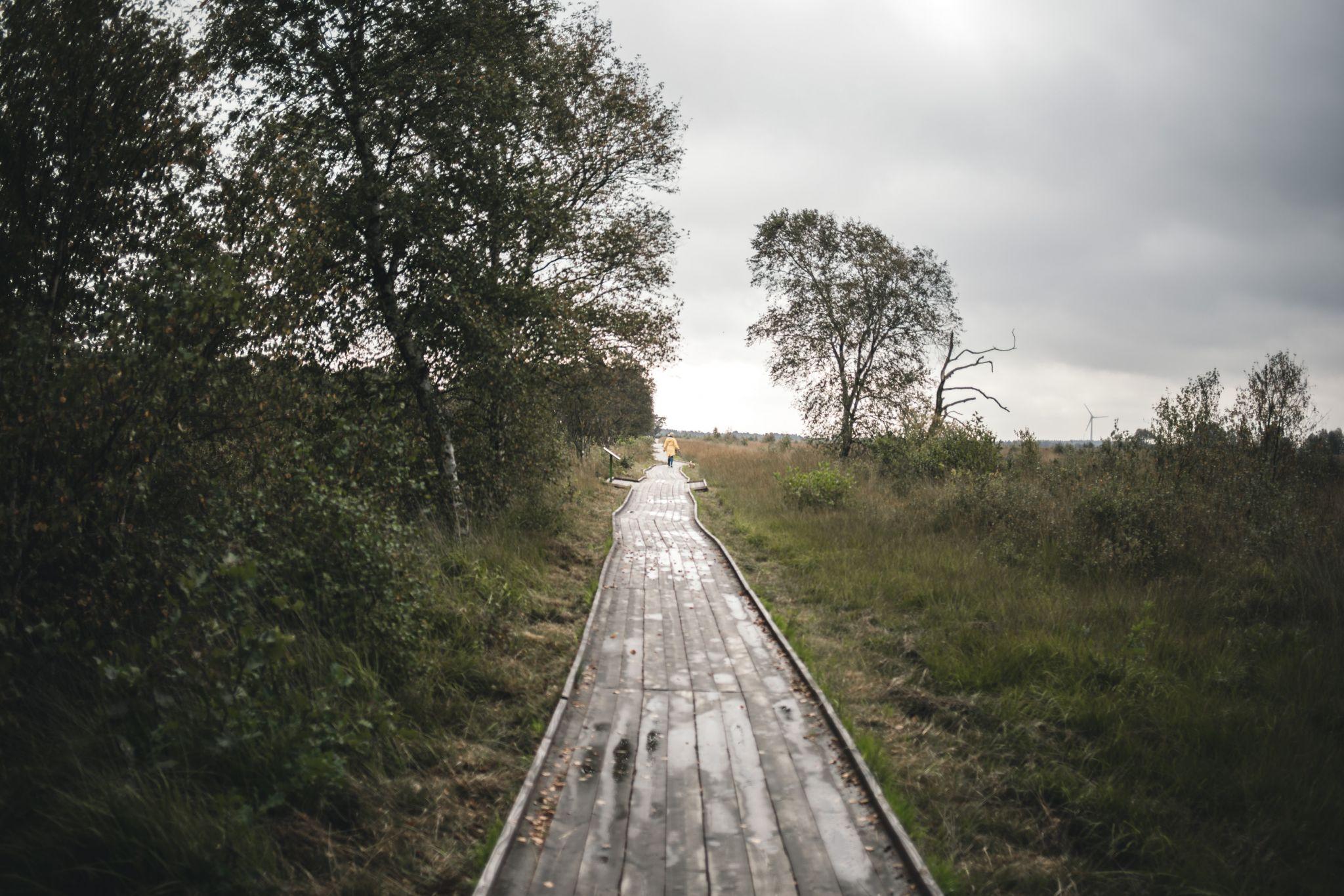 Ewiges Meer Ostfriesland (Eversmeer), Germany