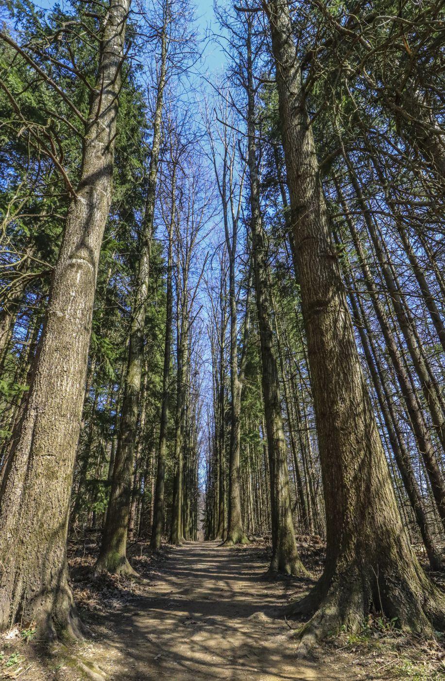 Oak Hill Trail, USA
