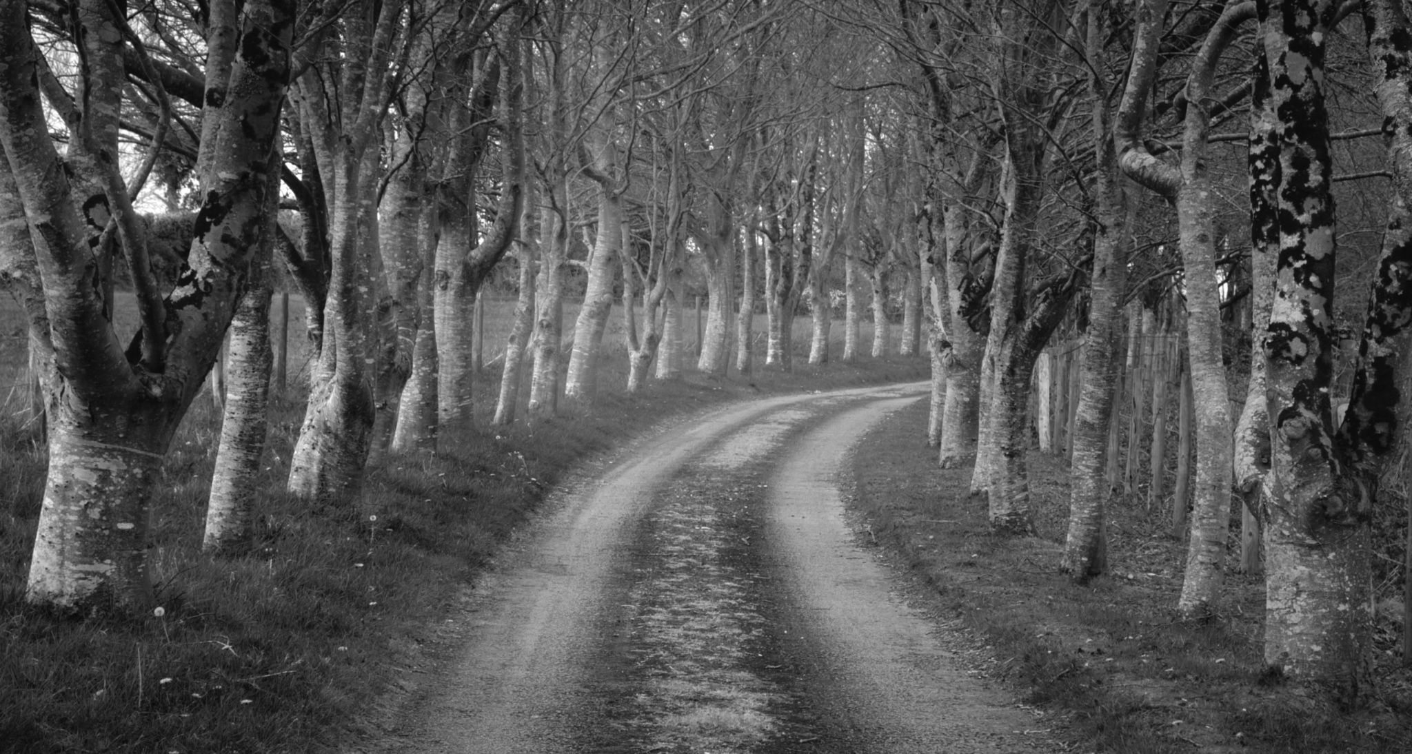 Trematon Walk, United Kingdom