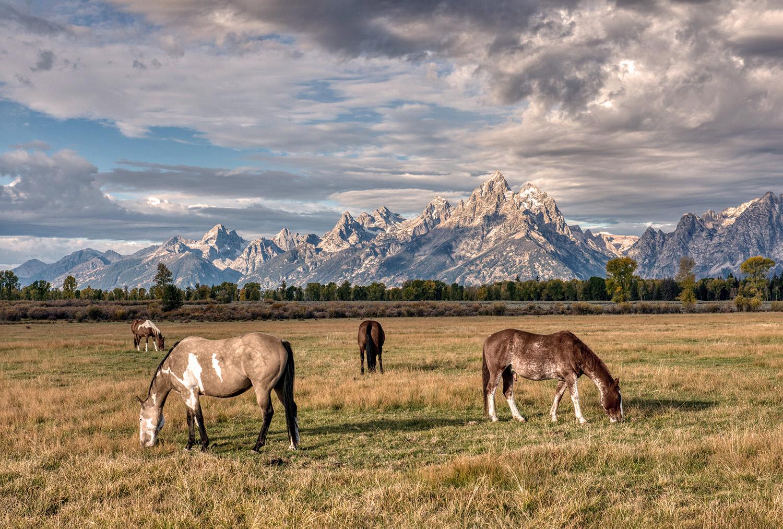Grand Teton NP, USA