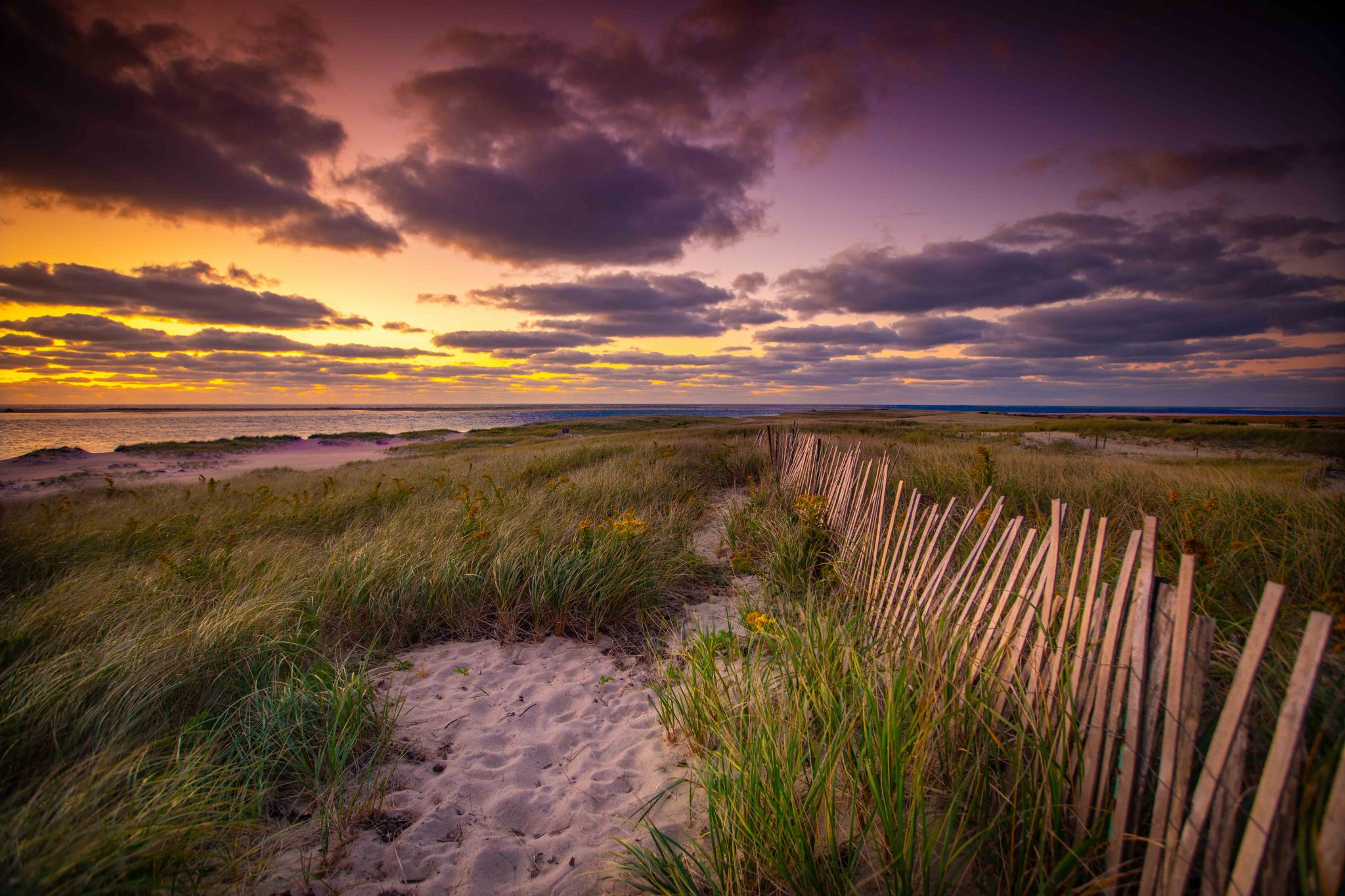 Sand dunes sunrise Chatham, USA