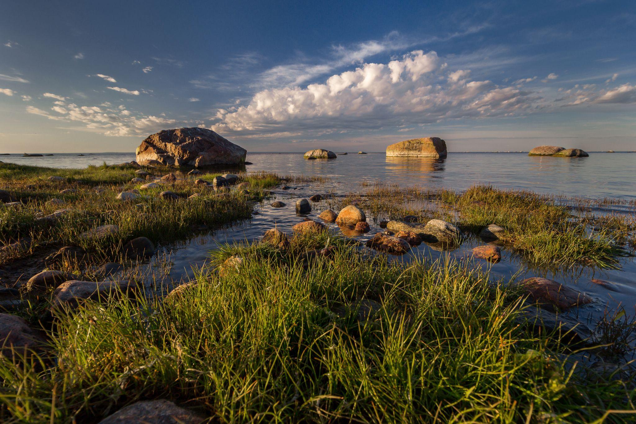 Beach on the Karavaldai Peninsula in the Leningrad Region, Russian Federation