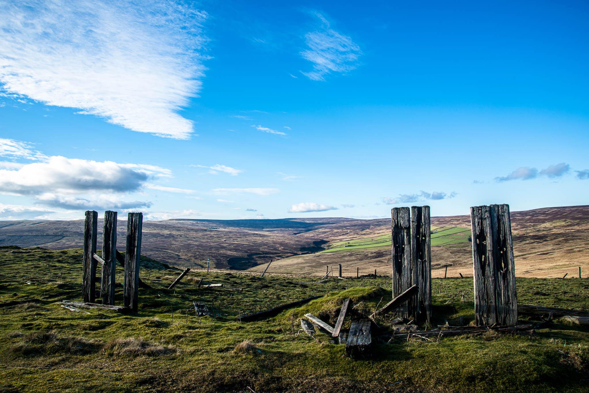 Crawleyside Fence Posts, United Kingdom