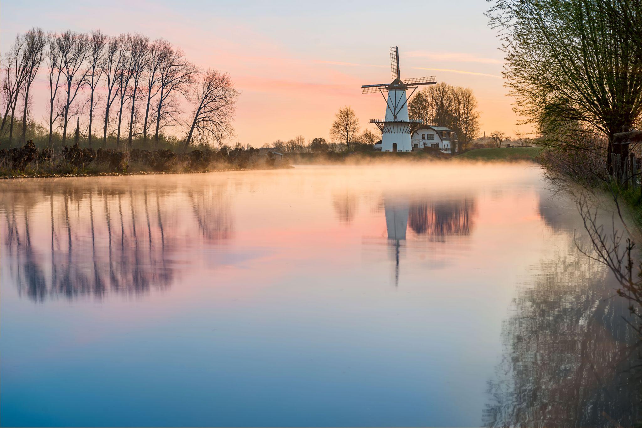 De Vlinder, Netherlands