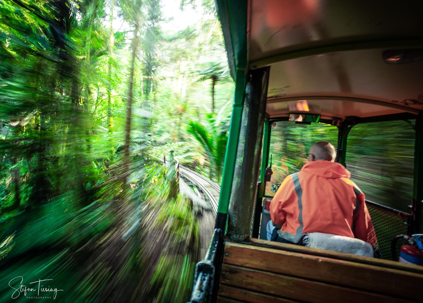 Driving Creek Railway, New Zealand