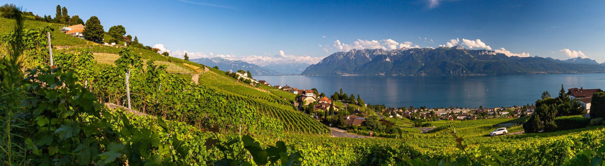 Lavaux panorama, Switzerland
