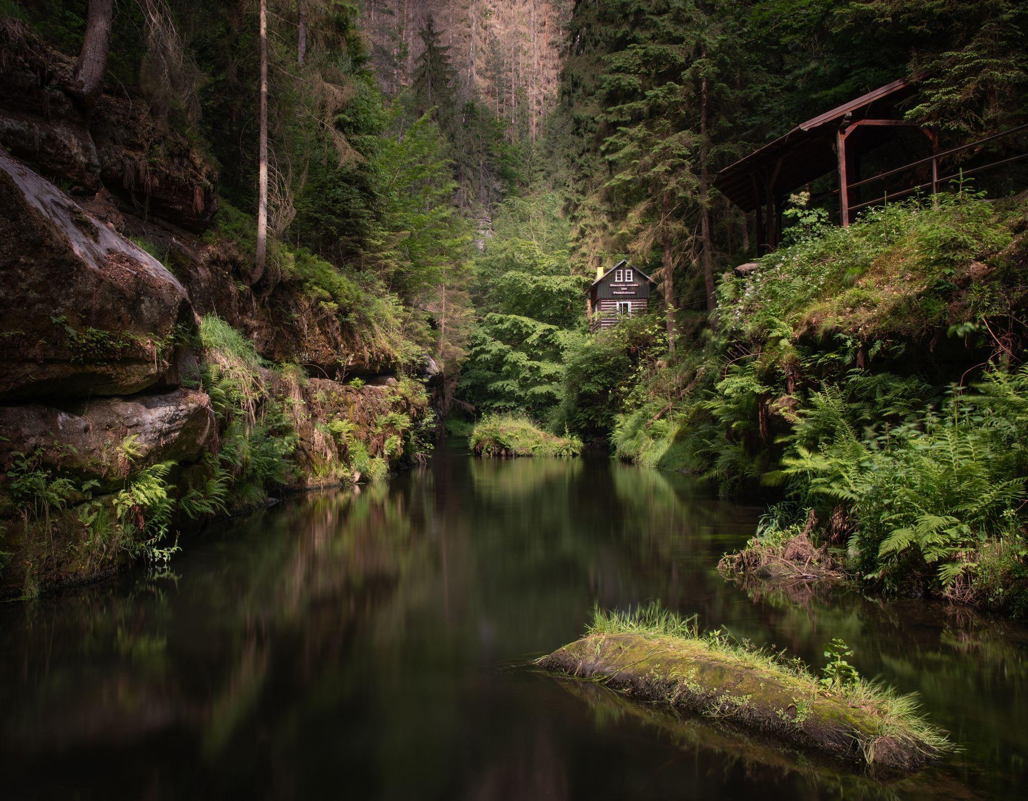 Magic forest, Czech Republic