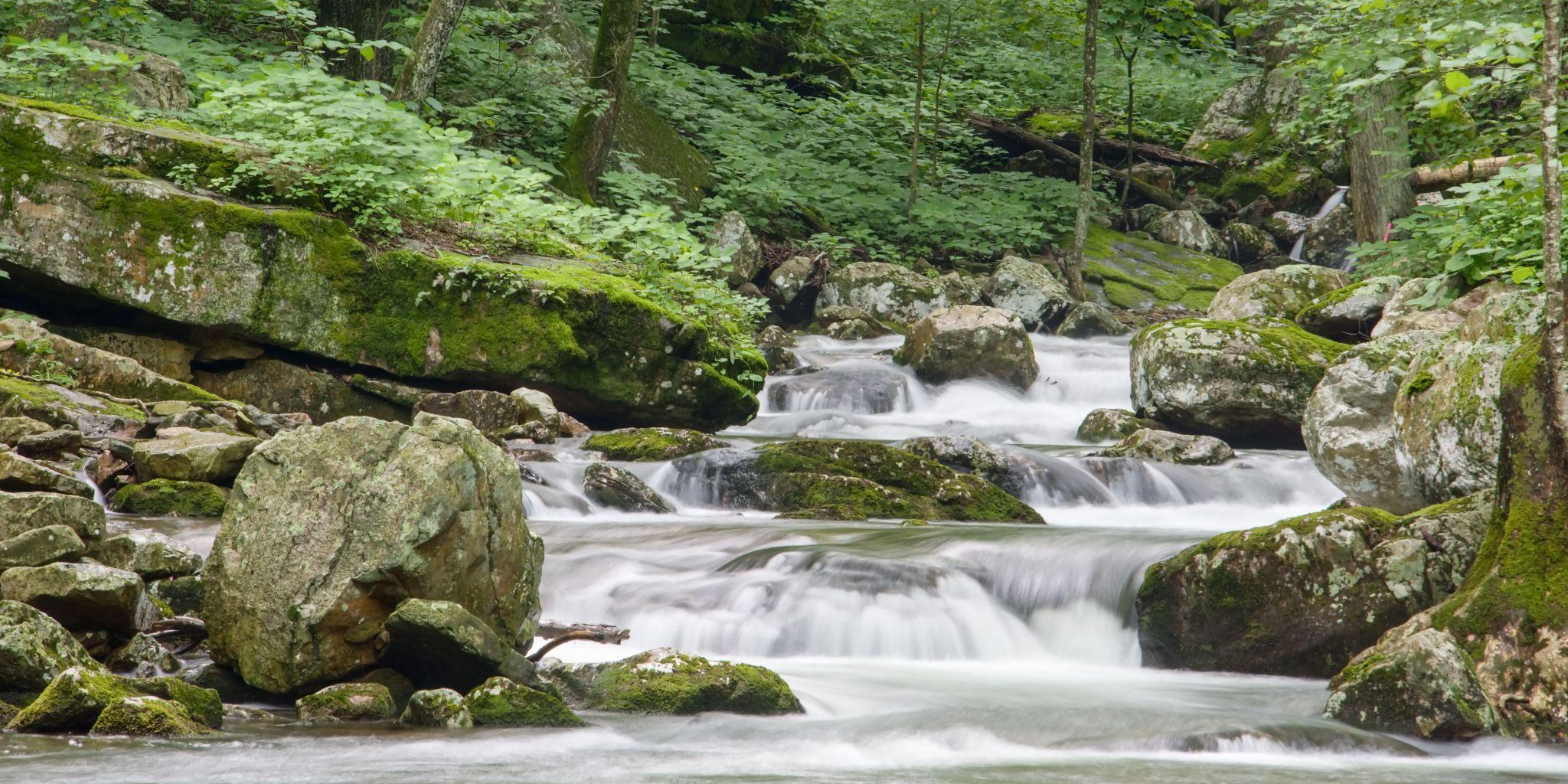 Mills Creek Trail Falls, USA