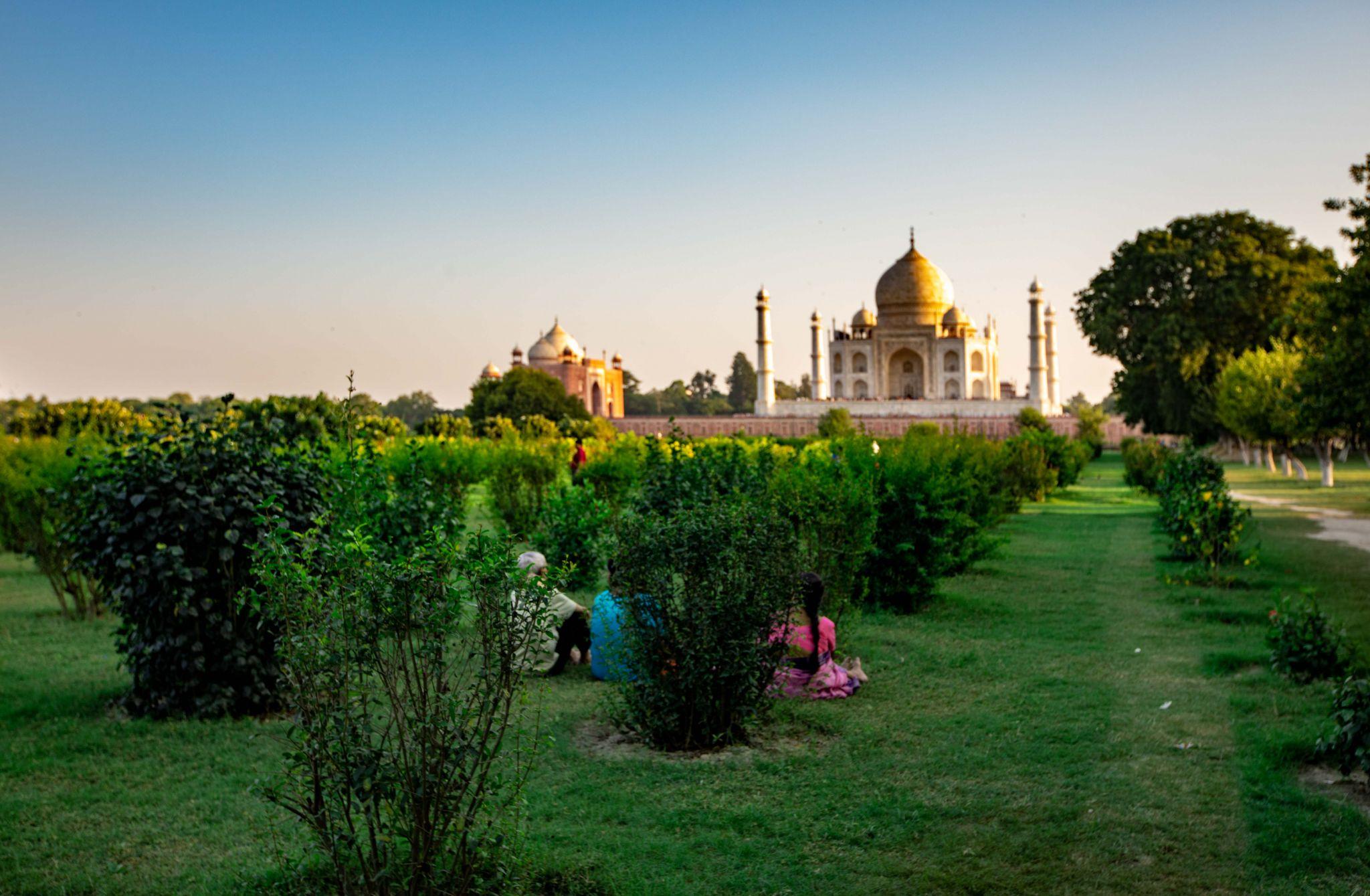 Mughal-era gardens, Taj Mahal sunset, Agra, India