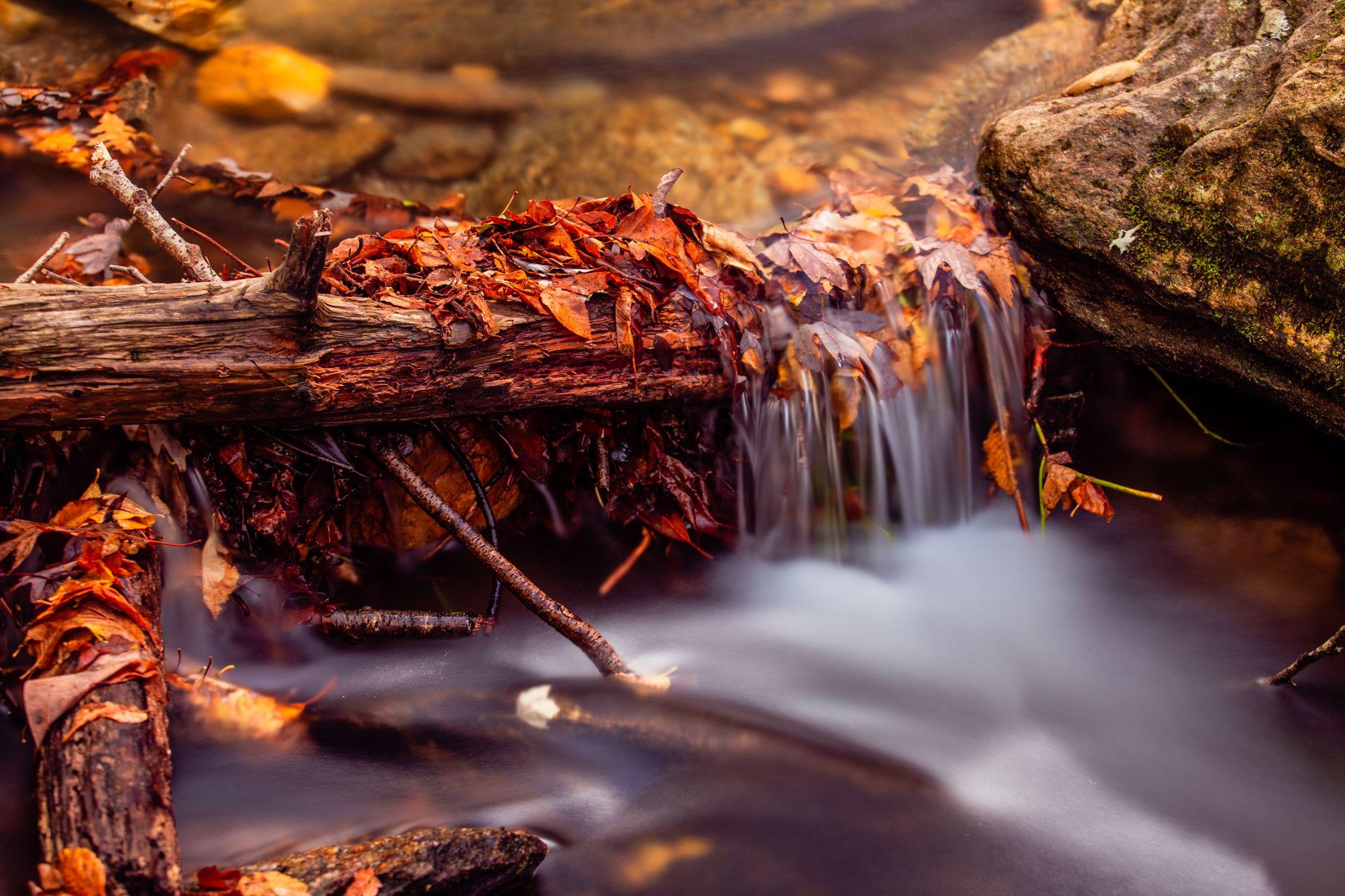 Roaring Fork Falls, USA