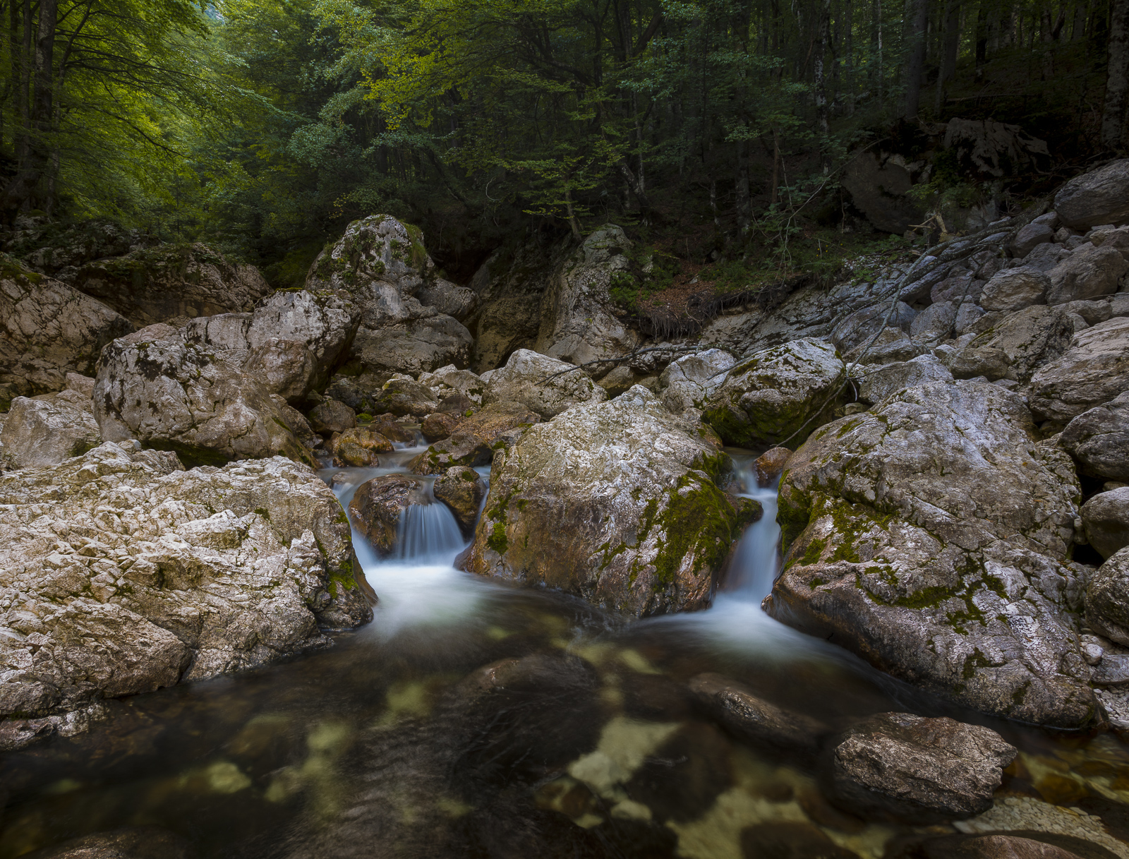 Sava Bohinjka river, Slovenia