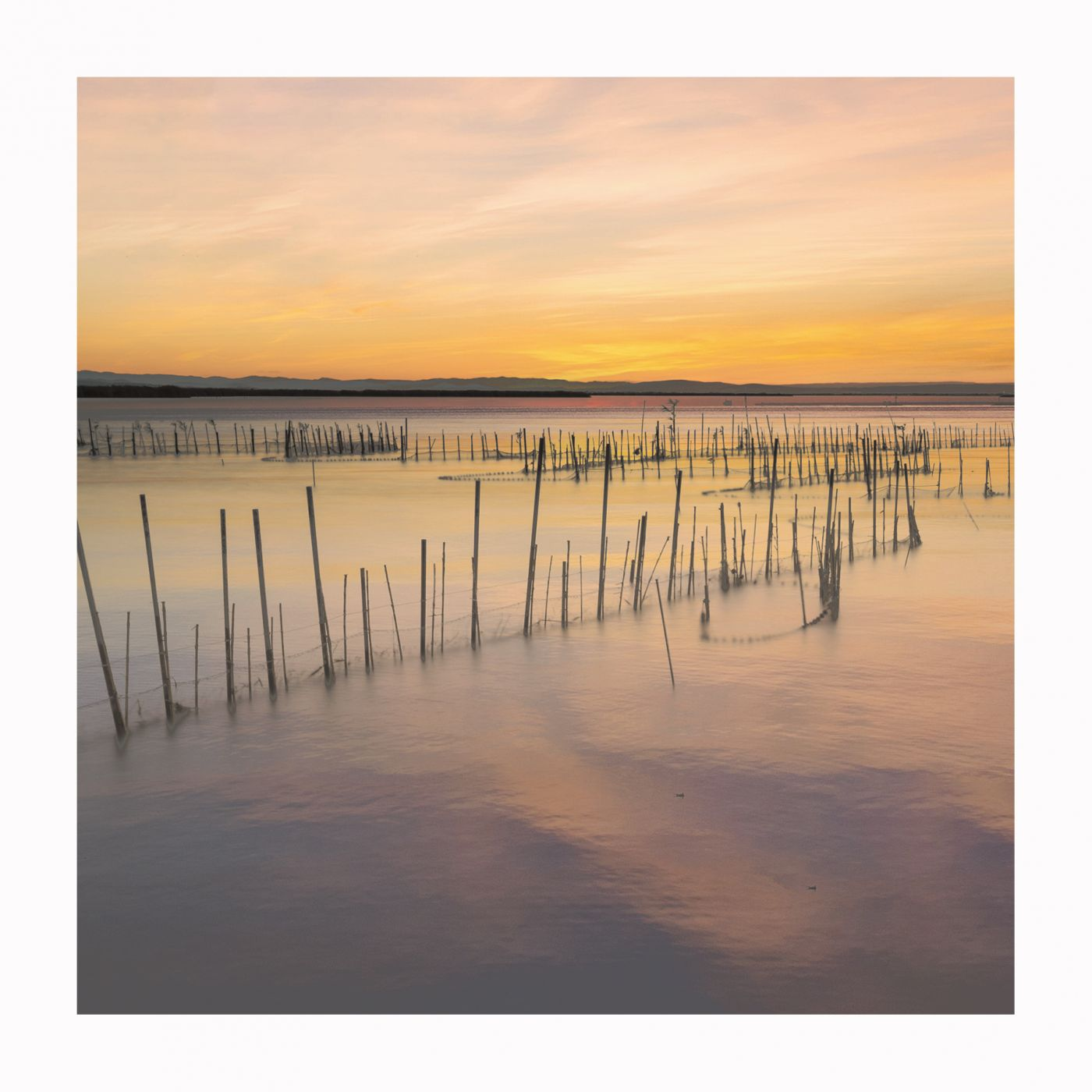 Sunset at the Natural Park of Albufera, Valencia, Spain