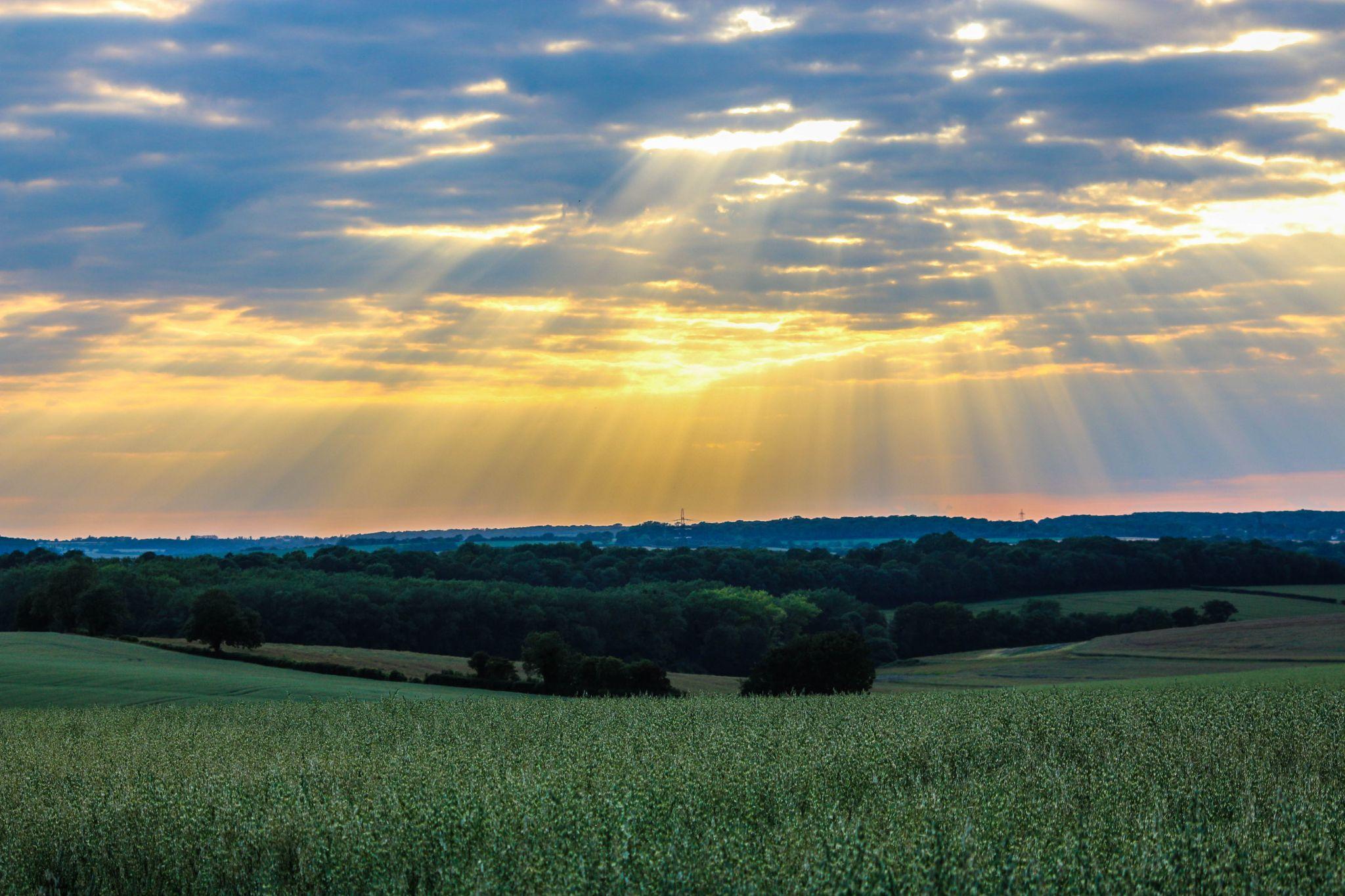 Sunset over Field, United Kingdom