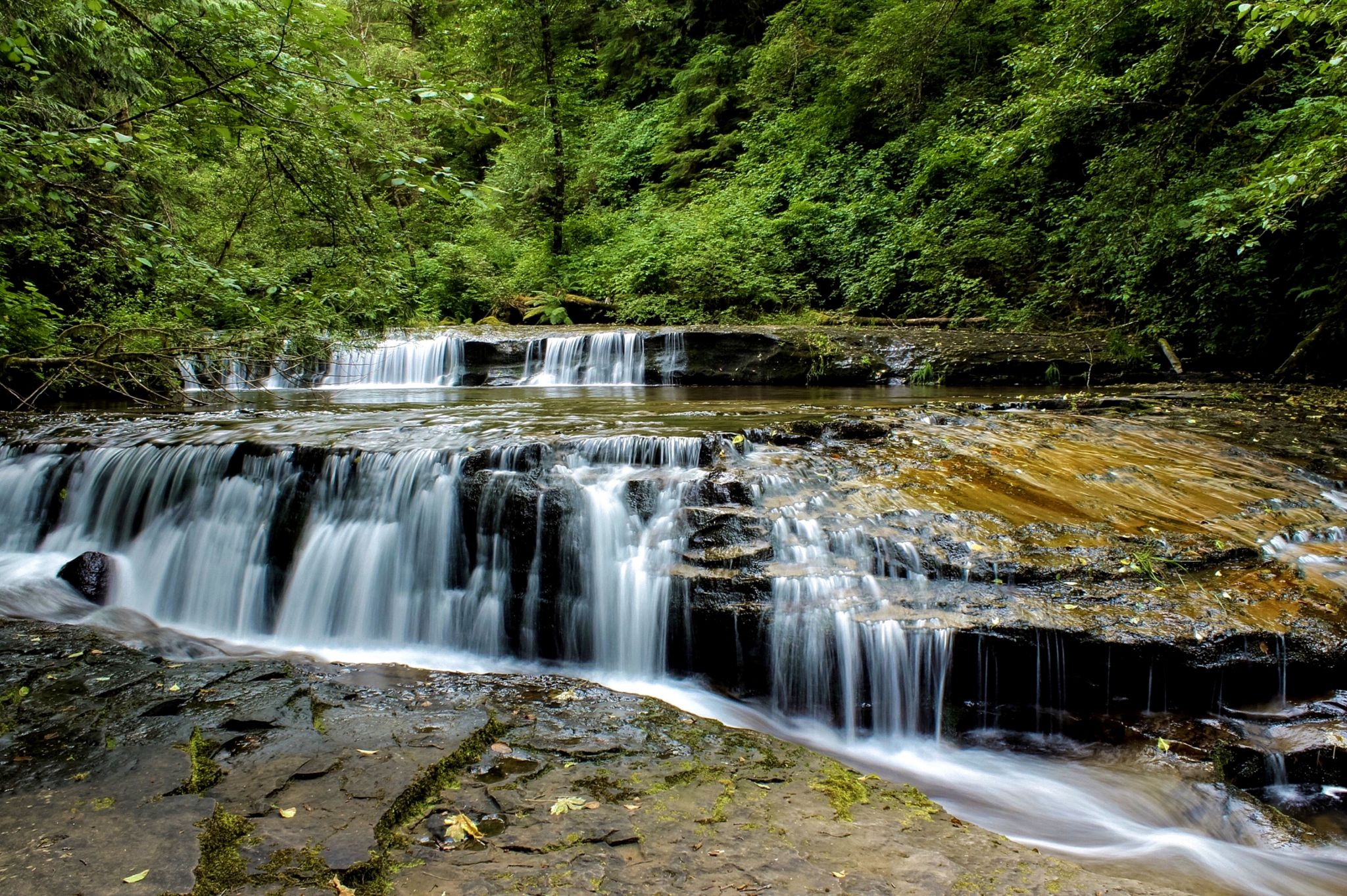 Sweet Creek, USA