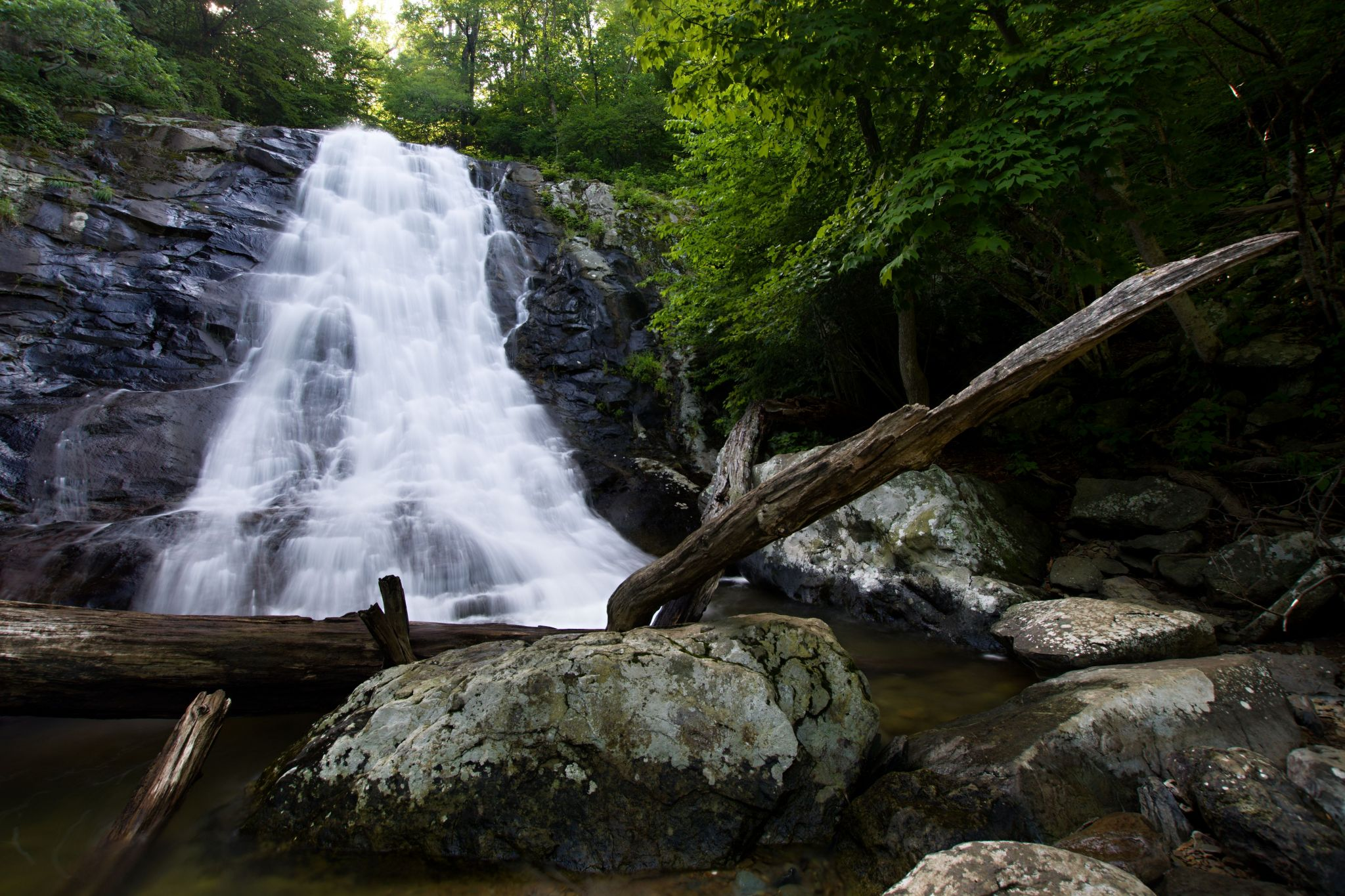 Whiteoak Falls, USA