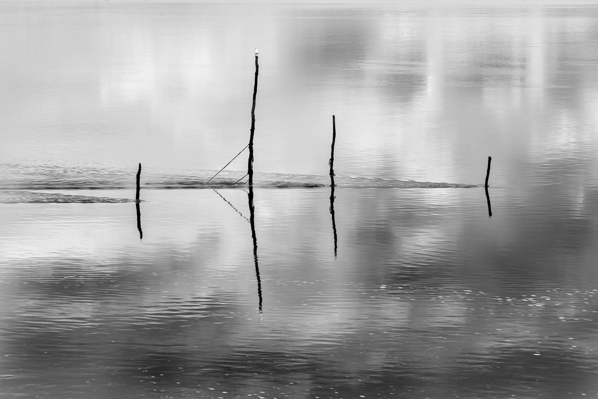 Fishing Poles, United Kingdom
