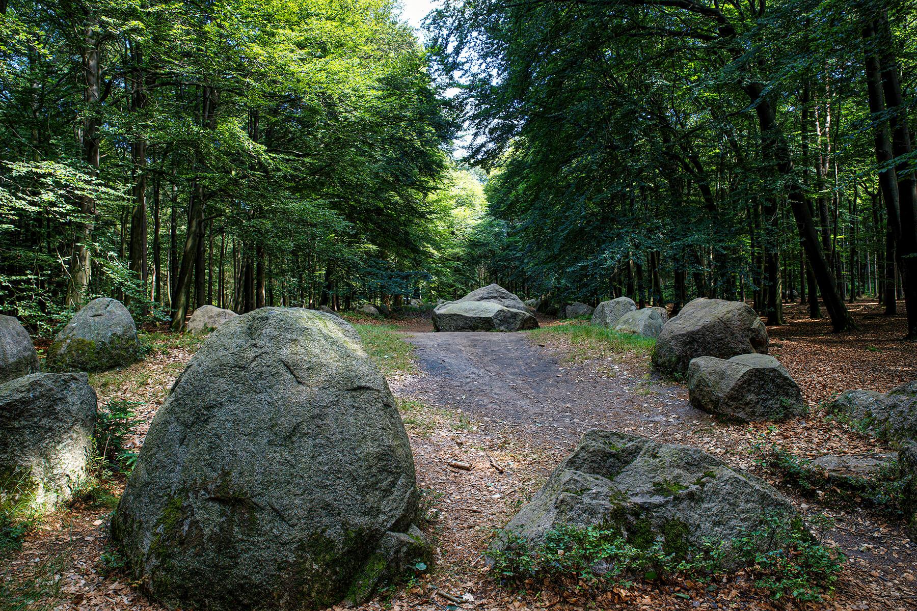 Visbek Groom, Germany