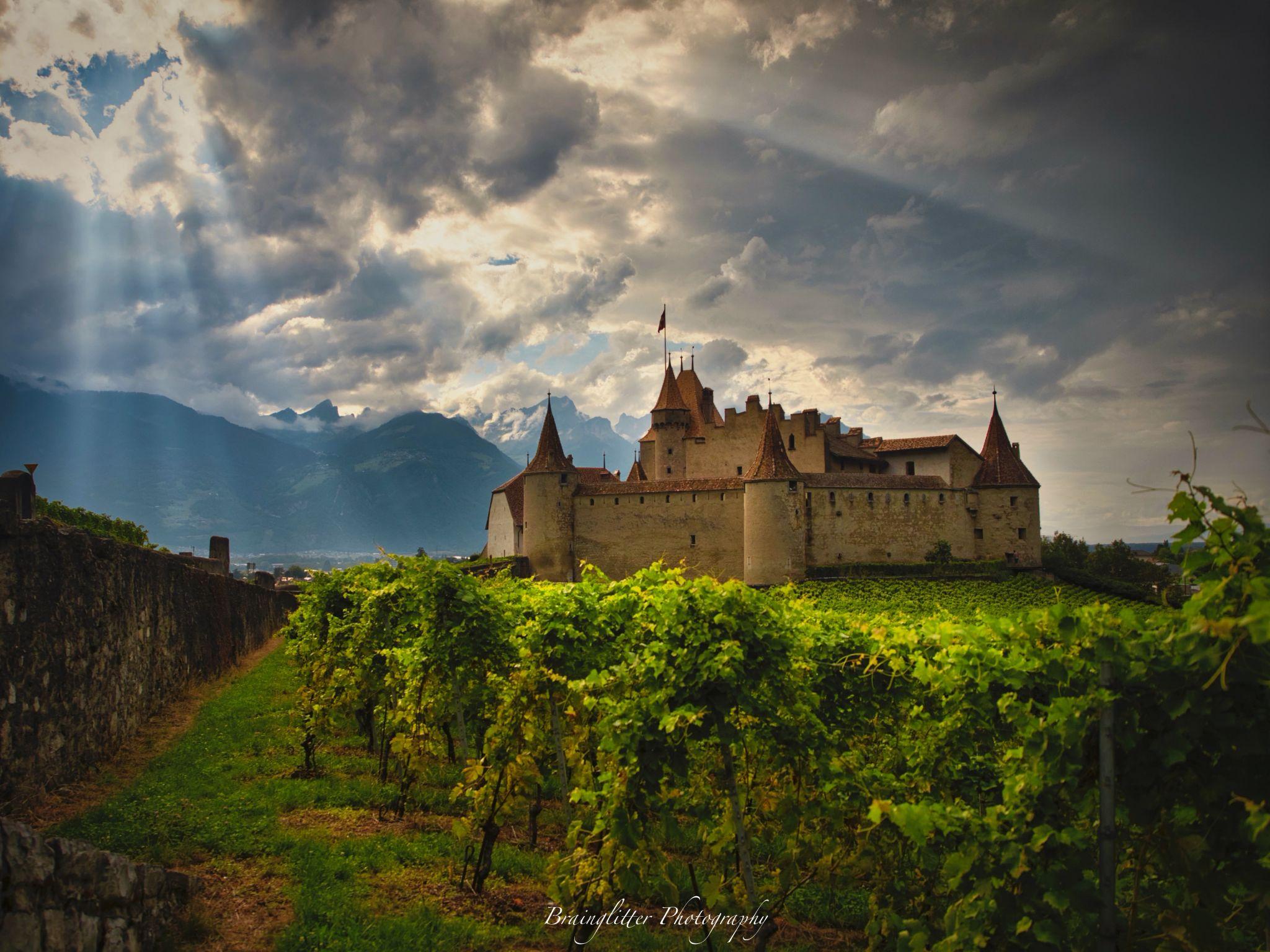 Area of Chateau Aigle, Wallis, Switzerland