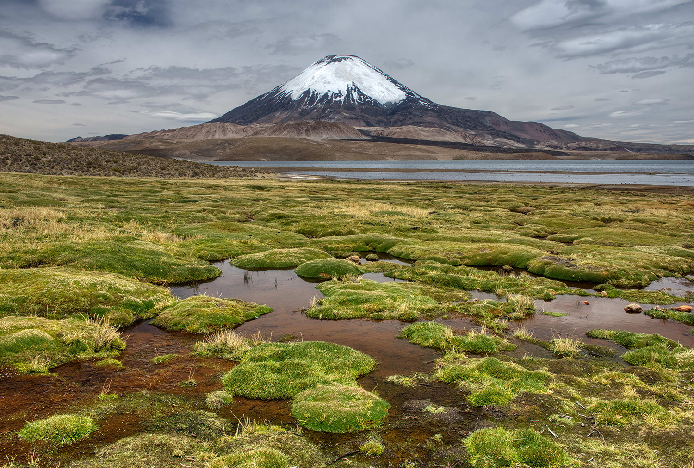 Chungara Lake with Parinacota volcano, Chile