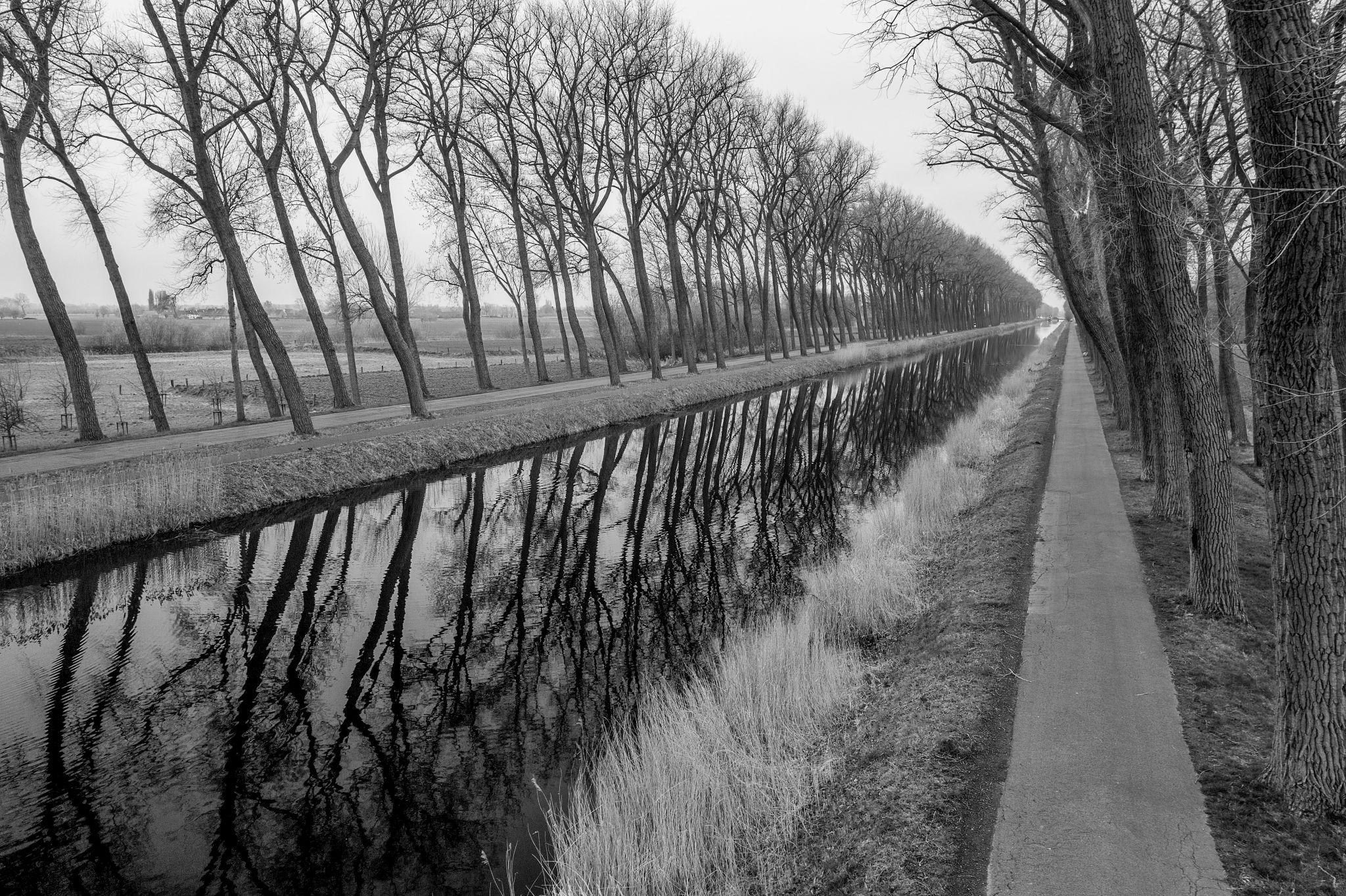 Damse vaart in black and white, Belgium