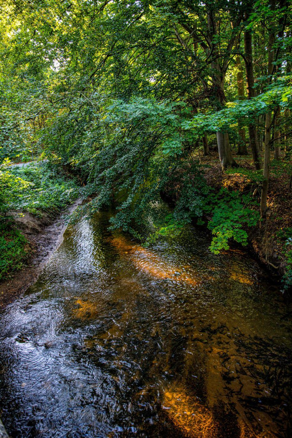 Fuhse River near Uetze, Germany