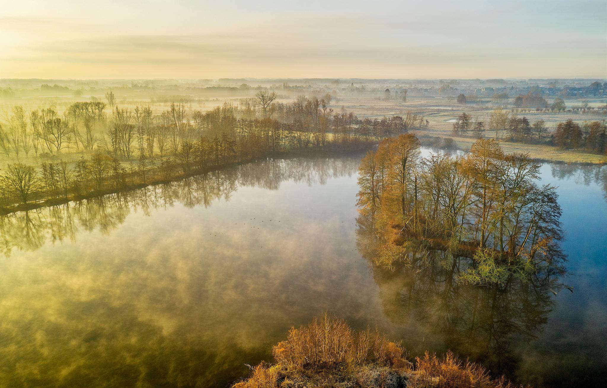 Kalkense Meersen on a cold, misty morning., Belgium