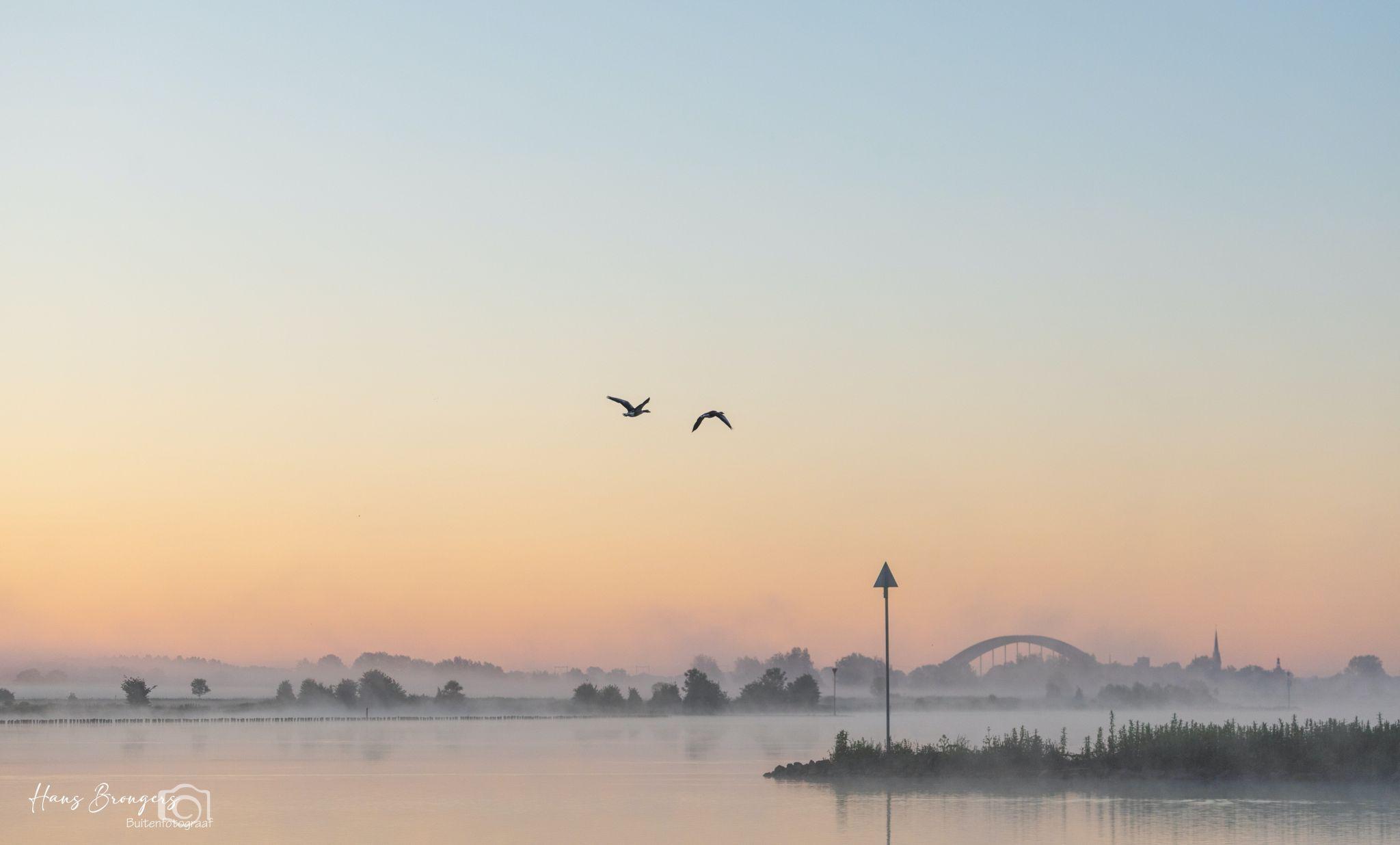 River Lek on a misty morning, Netherlands