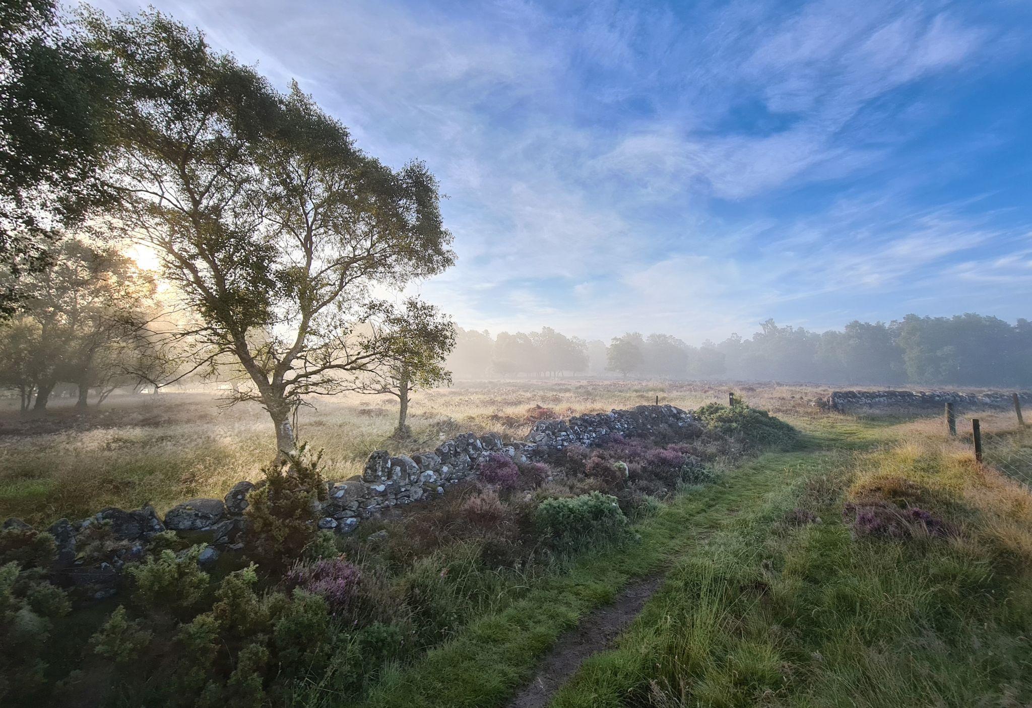 Rochaille Hill Plantation, United Kingdom